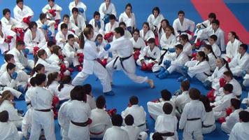 Club bushido ronda karate wado ryu for Polideportivo ciudad jardin malaga